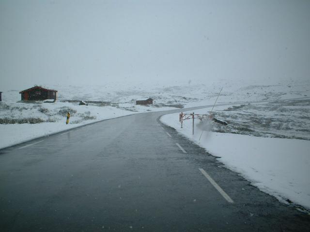 Scandinavia Travel: june-polar-circle.jpg
