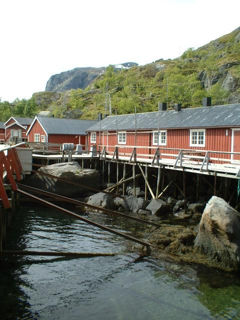 Scandinavia Travel: lofoten-cod-processing-workshop.jpg