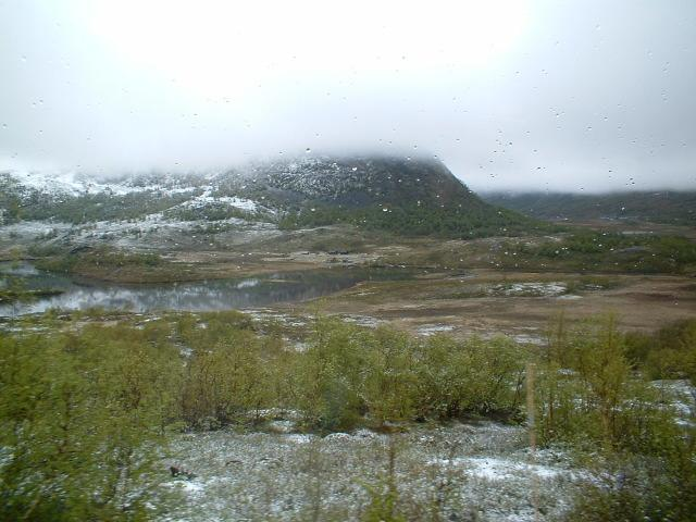 Scandinavia Travel: snow.jpg