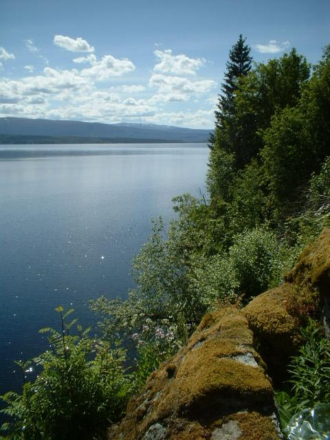 Scandinavia Travel: wilderness.jpg